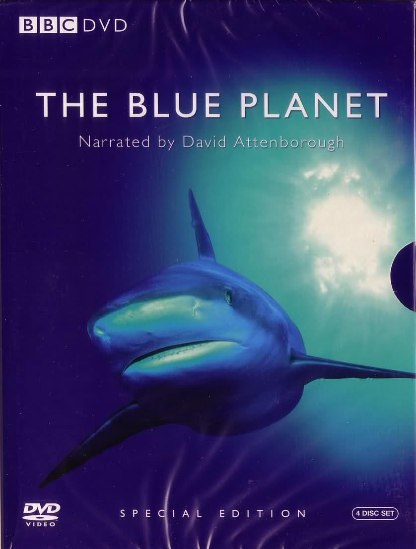 BBC 将在今年播出《蓝色星球》续集,准备好这将是一部要刷爆你朋友圈的纪录片   理想生活实验室 - 为更理想的生活